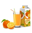 Orange juice set vector