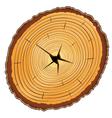 Wooden cross section vector