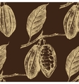 Hand drawn cocoa beans seamless vector