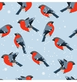 Stylized seamless pattern with bullfinches vector