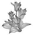 Decorative floral element vector