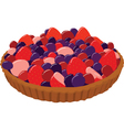Fresh berry tarts vector