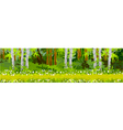 Pathway in the forest panorama vector