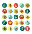 Set of flat design fruits and vegetables icons vector