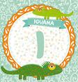 Abc animals i is iguana childrens english alphabet vector