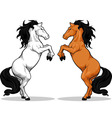 Prancing stallion or horse vector