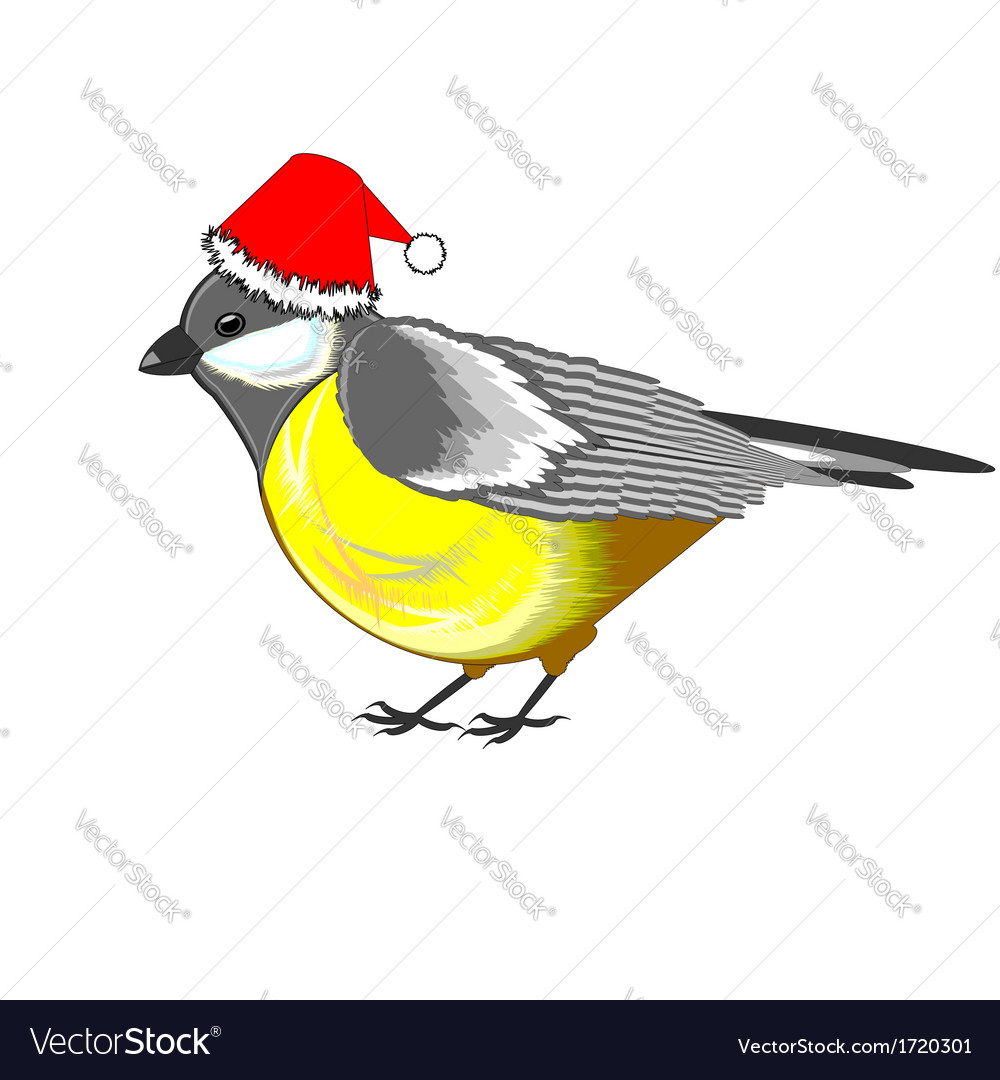 A cute christmas titmouse vector | Price: 1 Credit (USD $1)