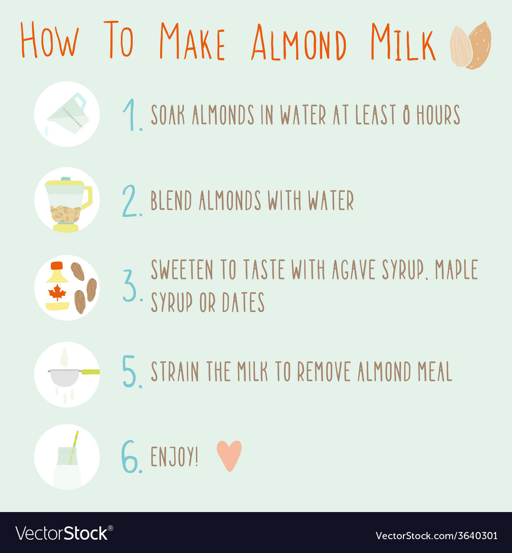 How to make almond milk vector | Price: 1 Credit (USD $1)