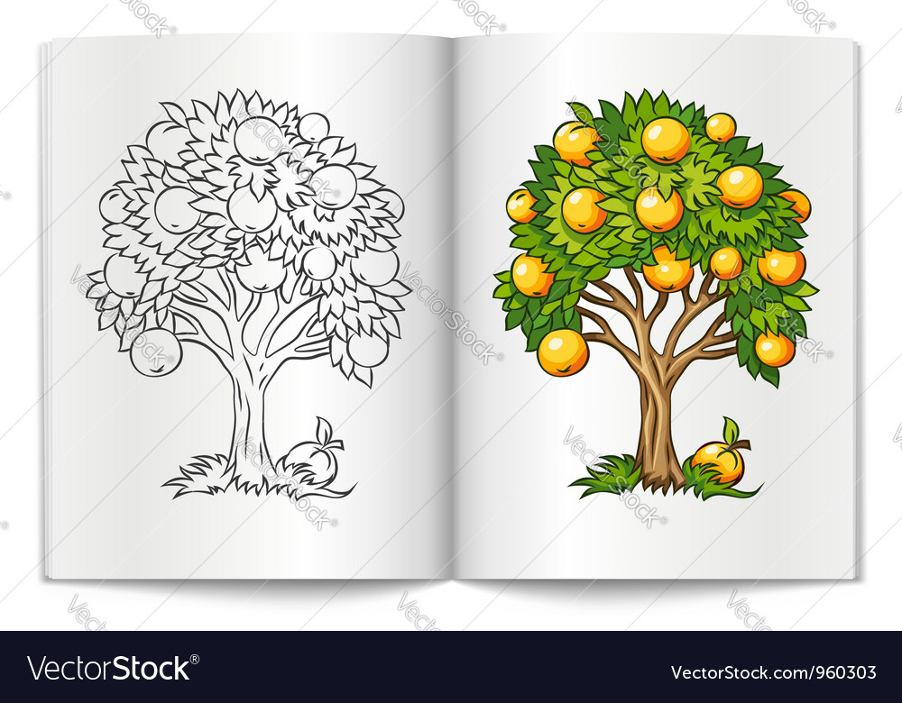 Fruit tree drawn on the book vector | Price: 1 Credit (USD $1)