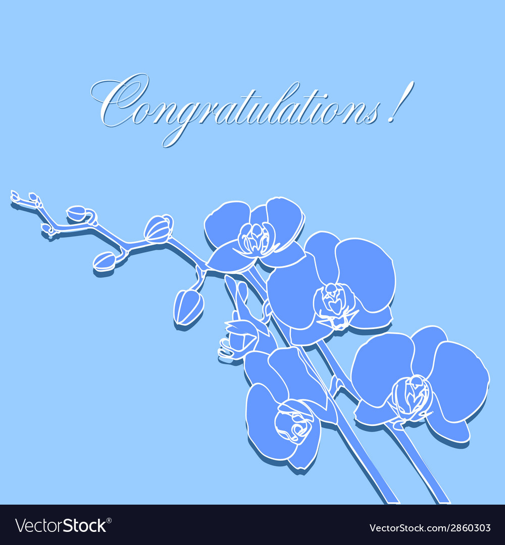 Greeting card with orchids vector | Price: 1 Credit (USD $1)