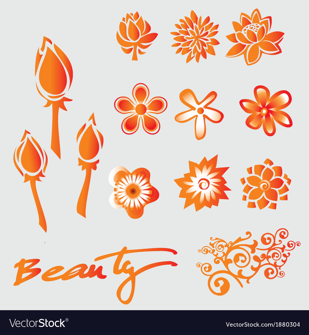 Set of floral and beauty graphic elements vector | Price: 1 Credit (USD $1)