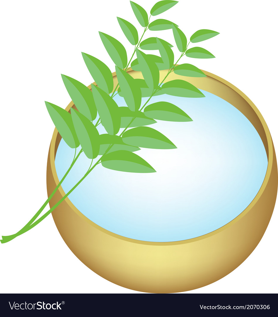 Holy water in golden bowl with green leaves vector | Price: 1 Credit (USD $1)