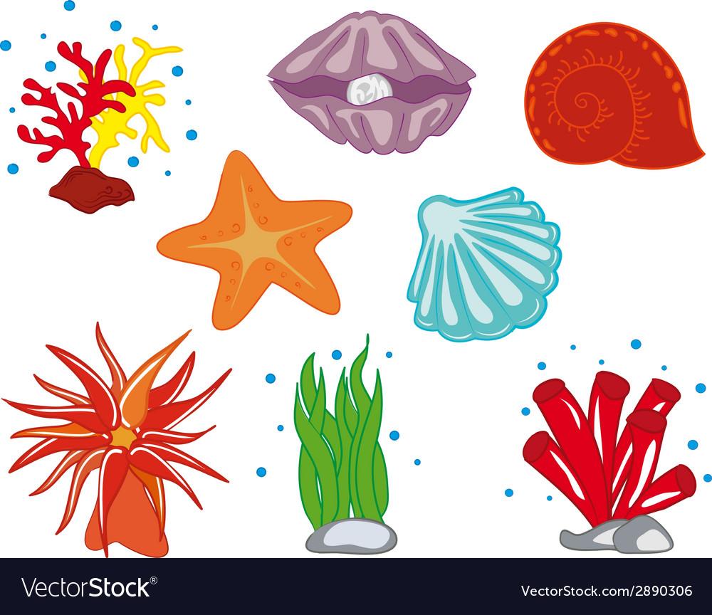 Tropical ocean flora vector | Price: 1 Credit (USD $1)