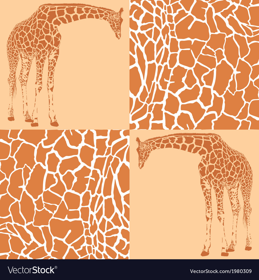 Giraffe patterns for wallpaper vector | Price: 1 Credit (USD $1)