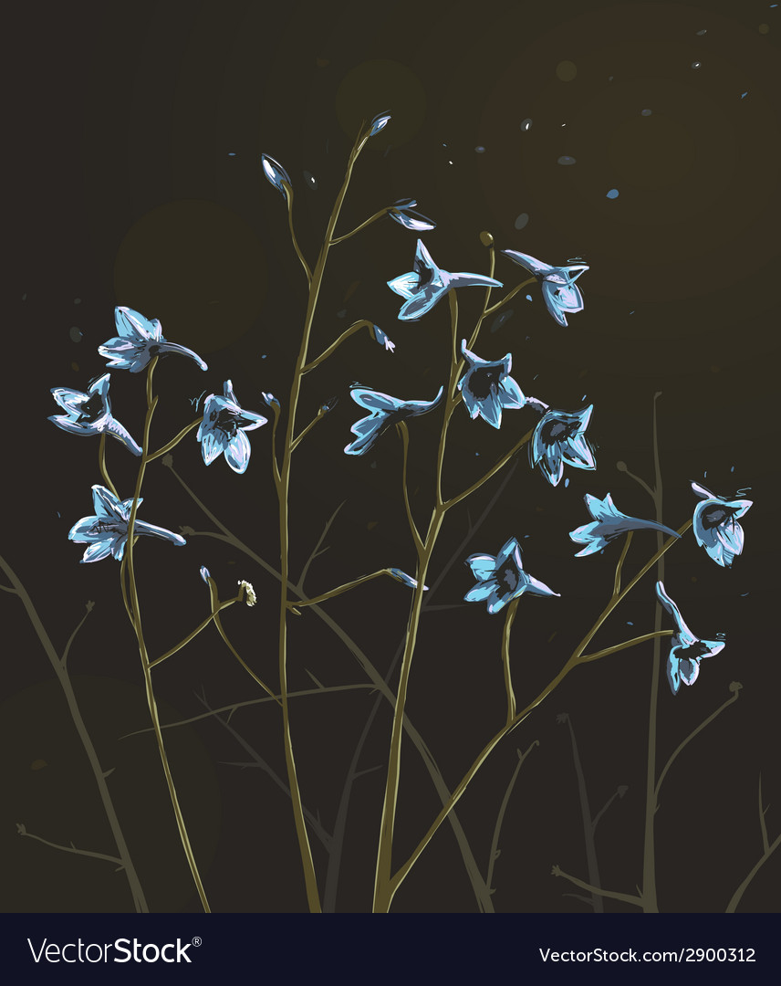 Romantic wild flowers composition on dark vector | Price: 1 Credit (USD $1)