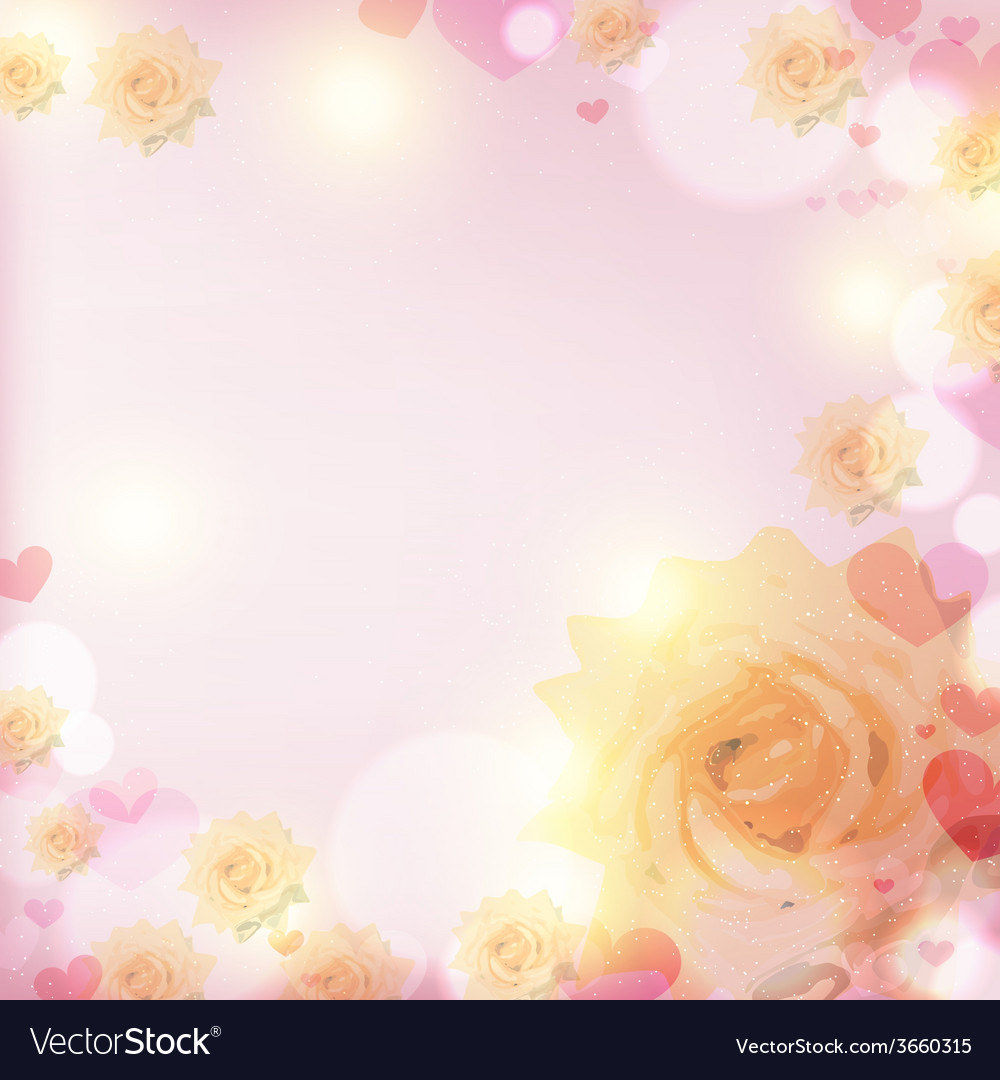 Blooming white rose in the glare from sunlight on vector | Price: 1 Credit (USD $1)