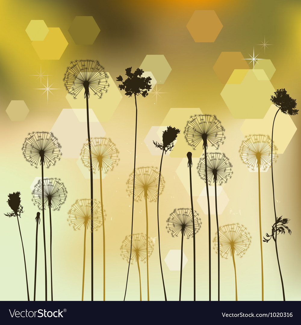 Floral background with dandelion vector | Price: 1 Credit (USD $1)