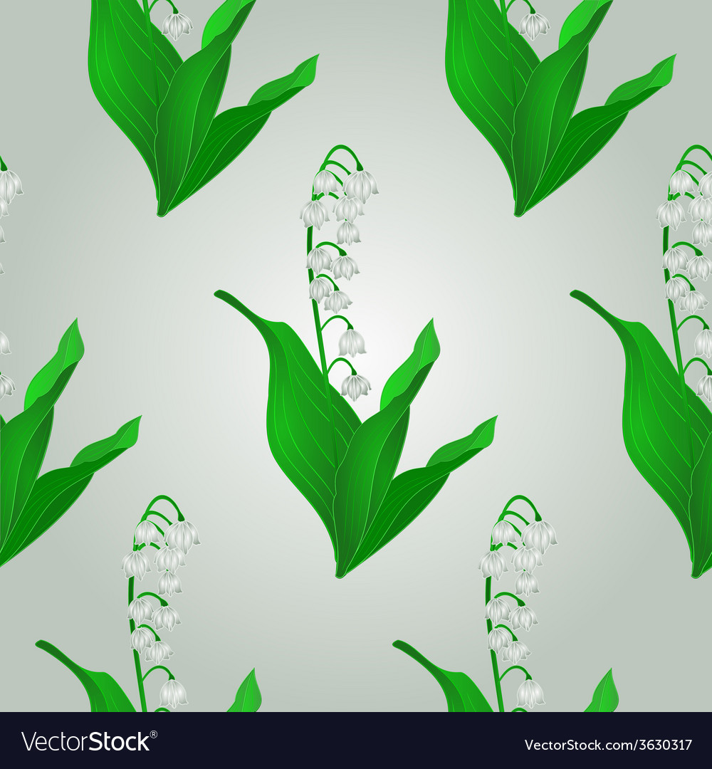Seamless texture lily of the valley spring flower vector | Price: 1 Credit (USD $1)