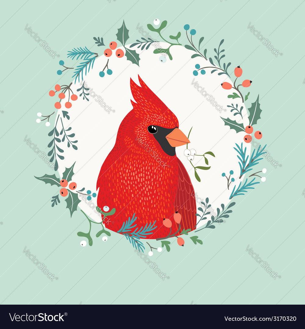 Christmas cardinal bird vector | Price: 1 Credit (USD $1)