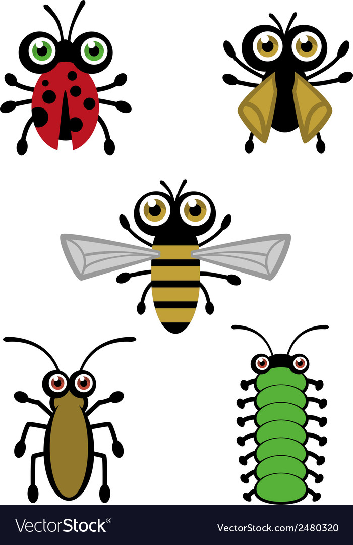 Cute little bugs vector | Price: 1 Credit (USD $1)