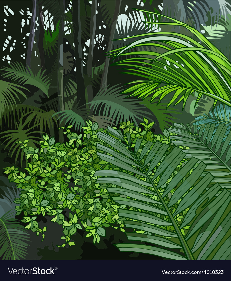 Background jungle of tropical plants vector | Price: 3 Credit (USD $3)