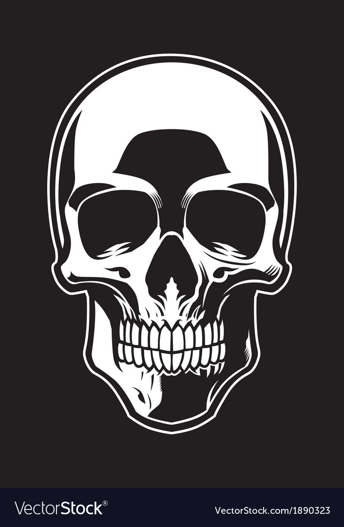Detailed skull vector | Price: 1 Credit (USD $1)