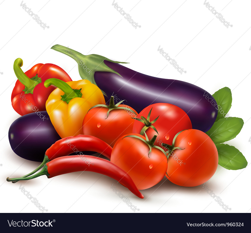 Fresh vegetable with leaves healthy eating vector | Price: 3 Credit (USD $3)