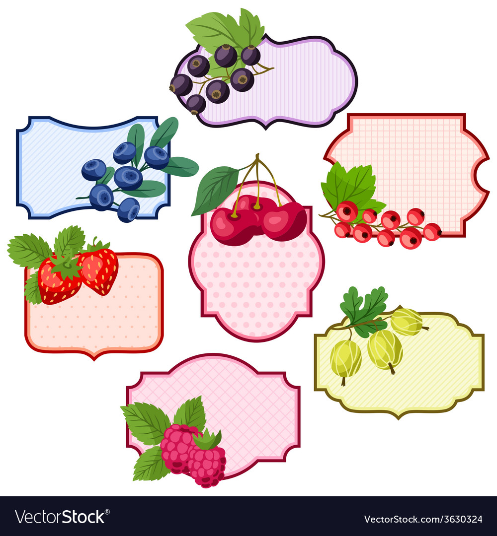 Set of various badges labels with berries vector | Price: 1 Credit (USD $1)