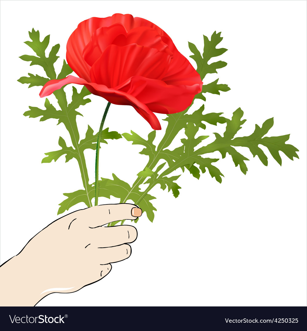 Hand with spring flowers vector | Price: 1 Credit (USD $1)