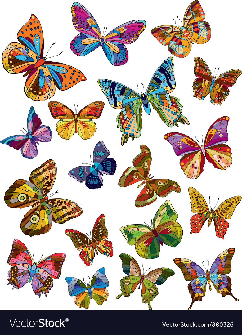 Butterfly set vector | Price: 3 Credit (USD $3)