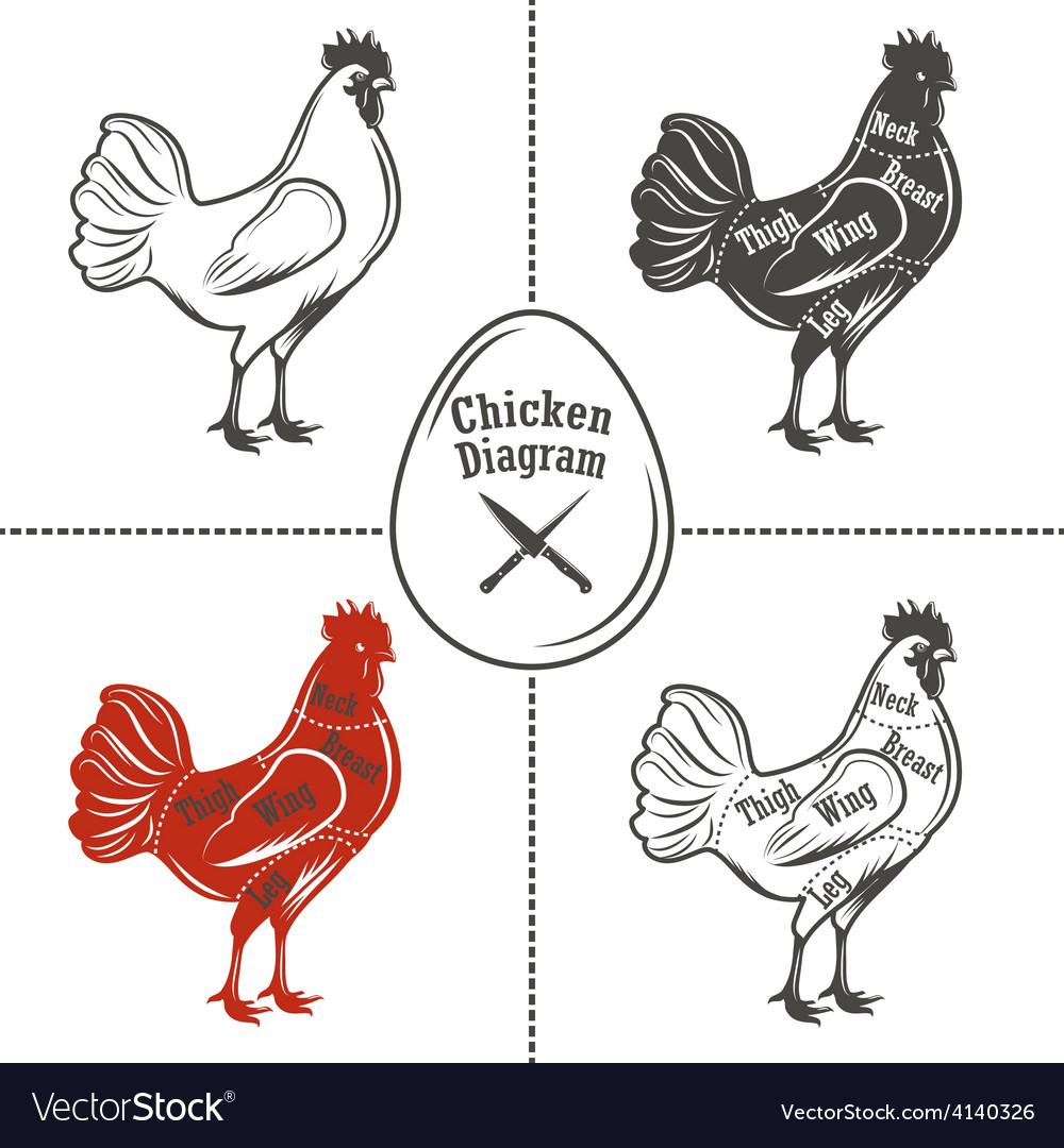 Chicken cuts diagram vector | Price: 1 Credit (USD $1)