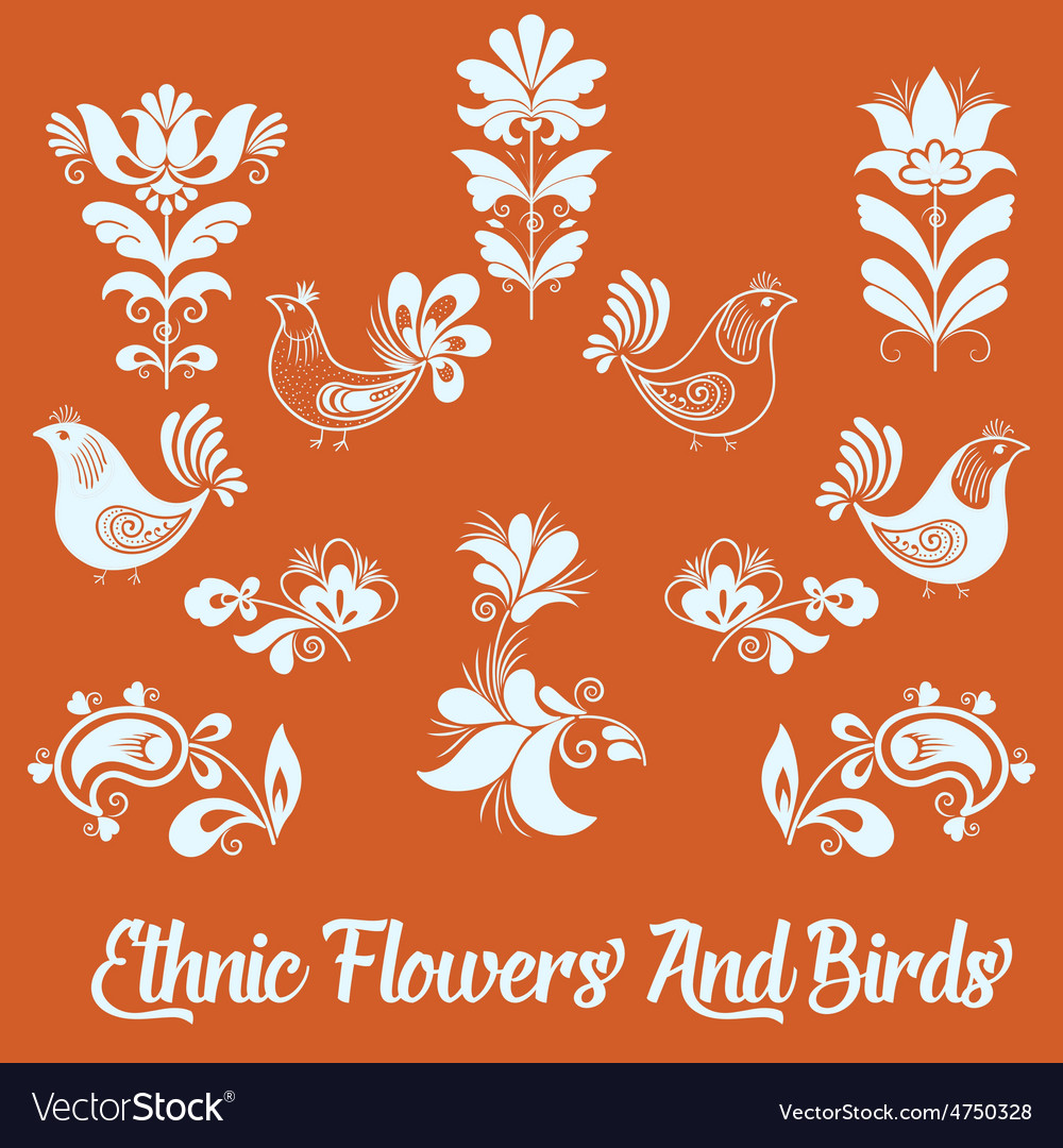 Set of floral elements and birds hand vector | Price: 1 Credit (USD $1)