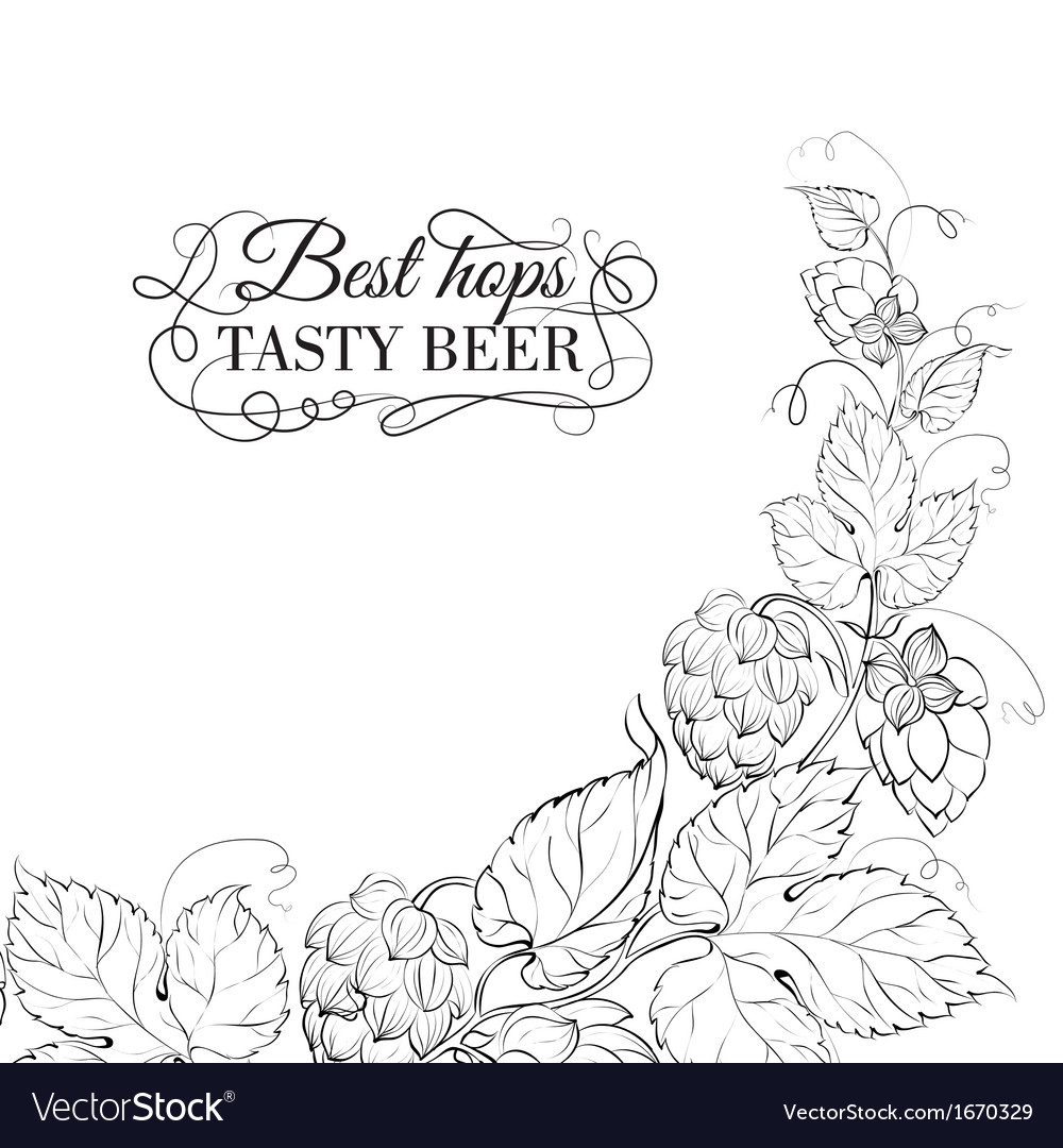 Decorative hops cover vector | Price: 1 Credit (USD $1)
