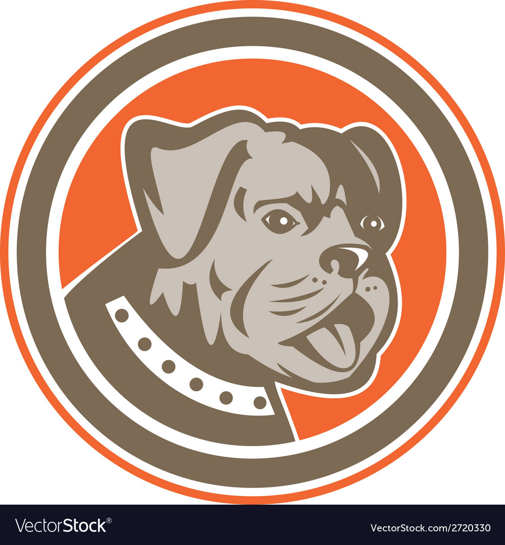 Bulldog dog mongrel head mascot circle vector | Price: 1 Credit (USD $1)