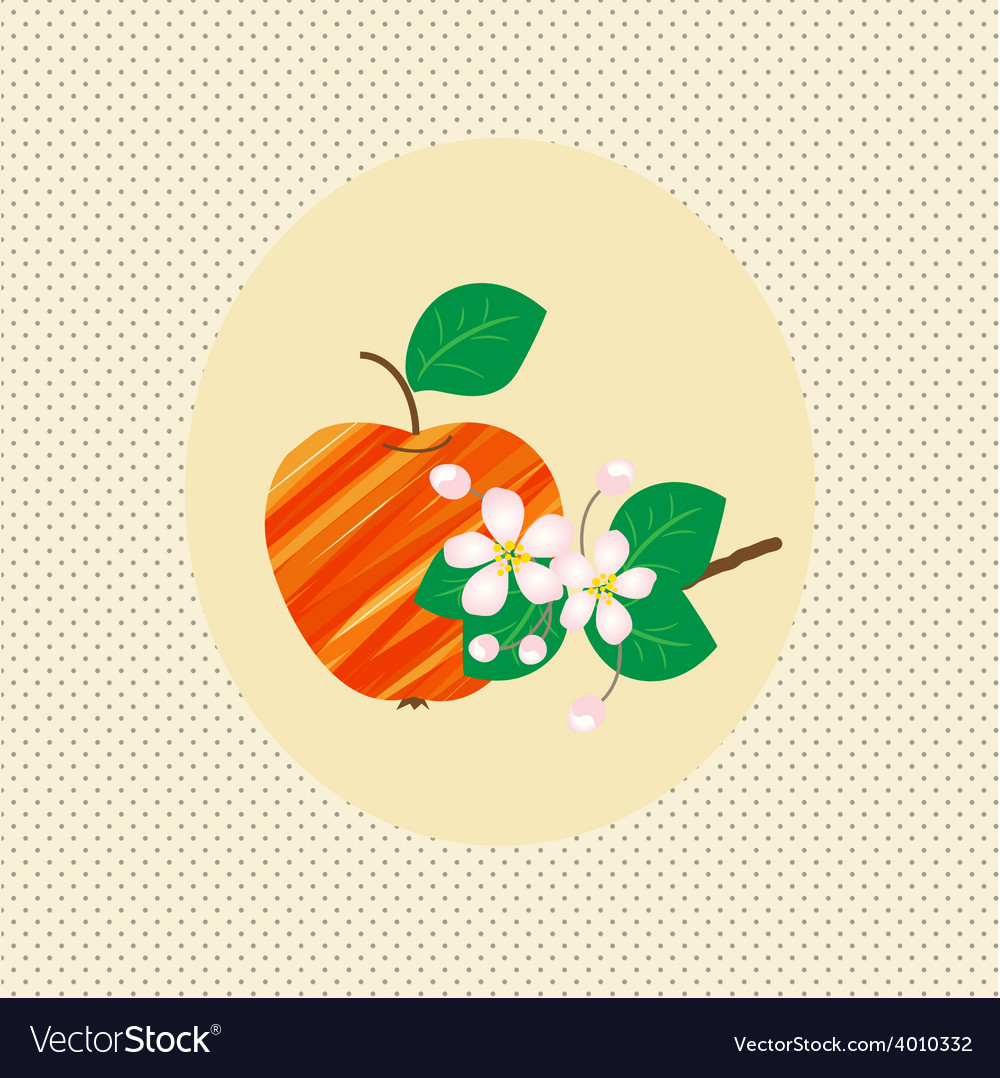Nature apple fruit pattern blossom vintage vector   Price: 1 Credit (USD $1)