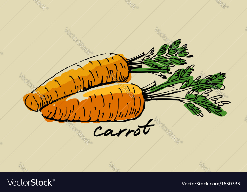 Hand drawn carrot vector | Price: 1 Credit (USD $1)
