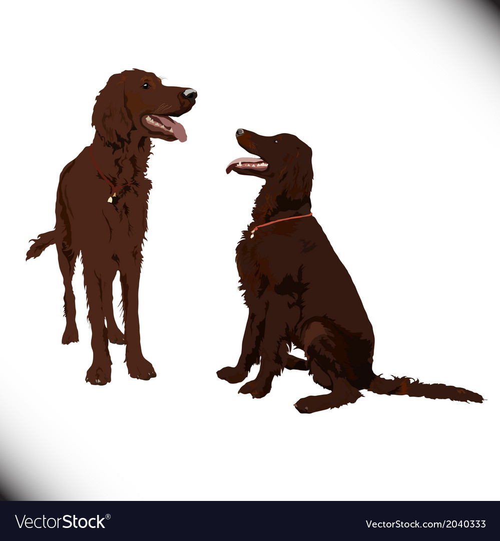 Two cute dogs vector | Price: 1 Credit (USD $1)