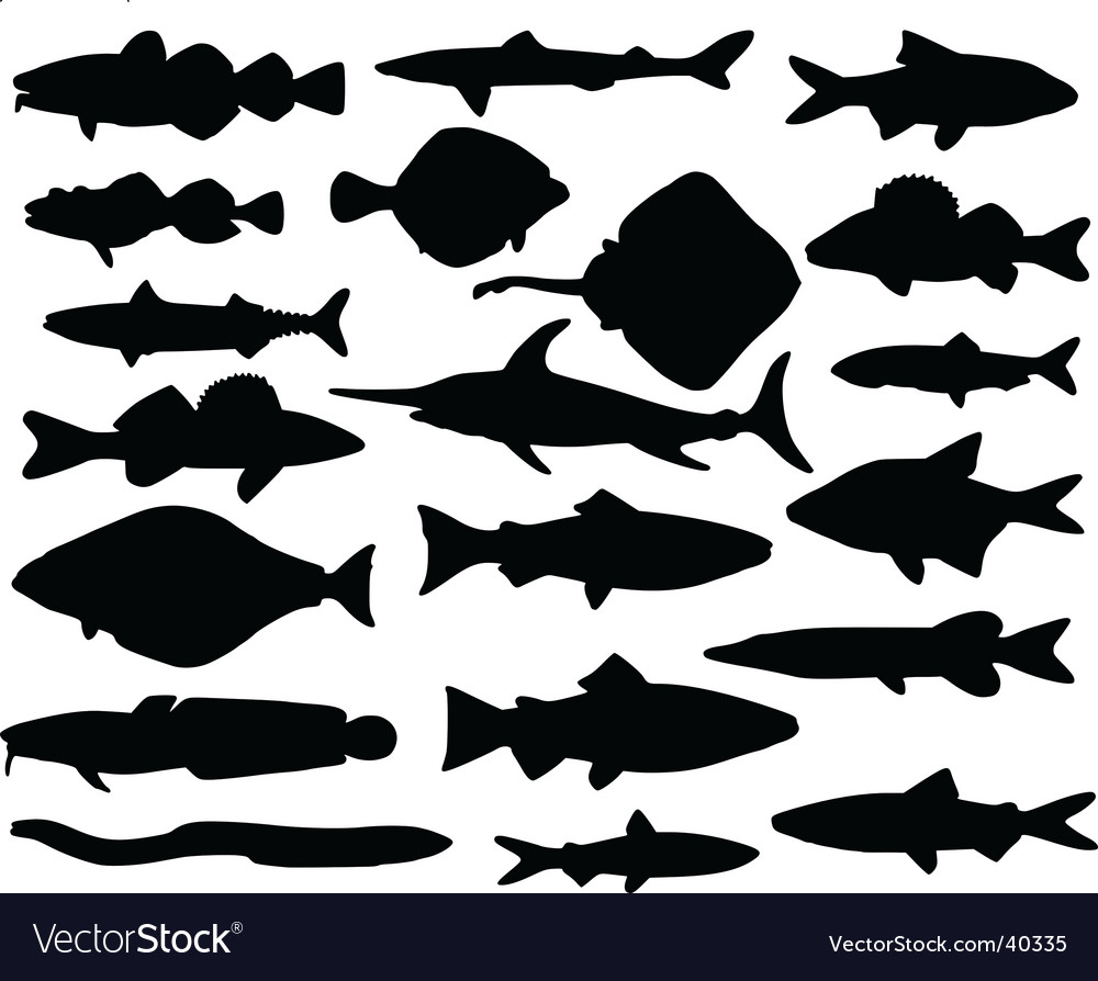 Fish silhouettes vector | Price: 1 Credit (USD $1)