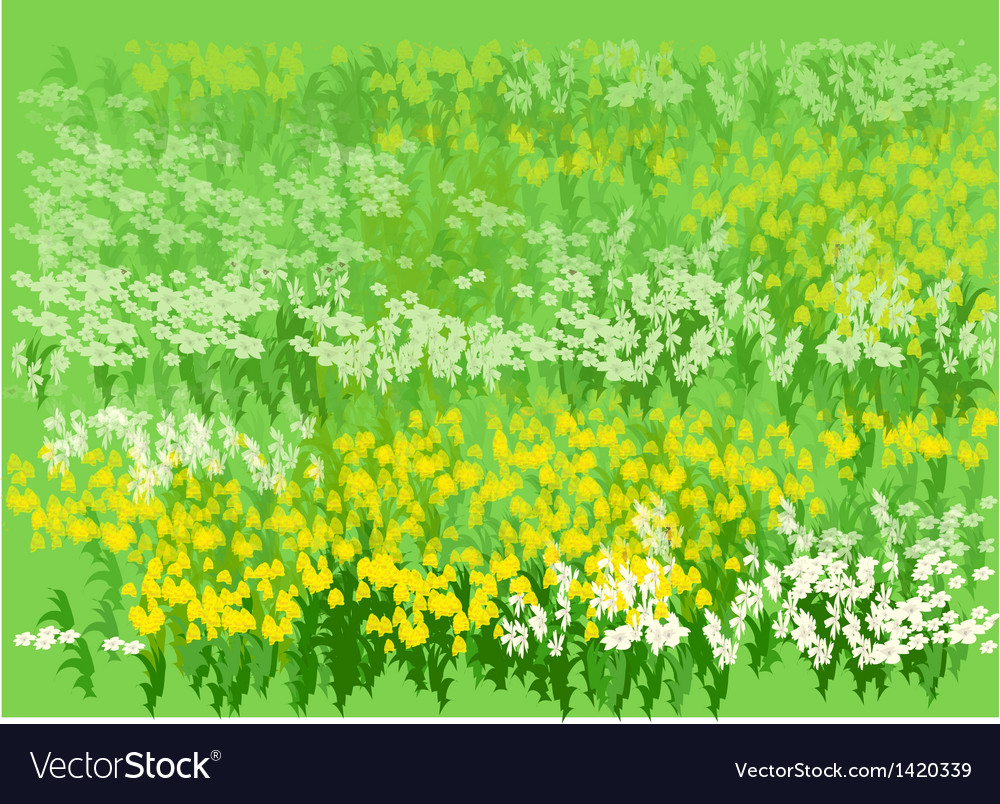 Flower bed vector | Price: 1 Credit (USD $1)