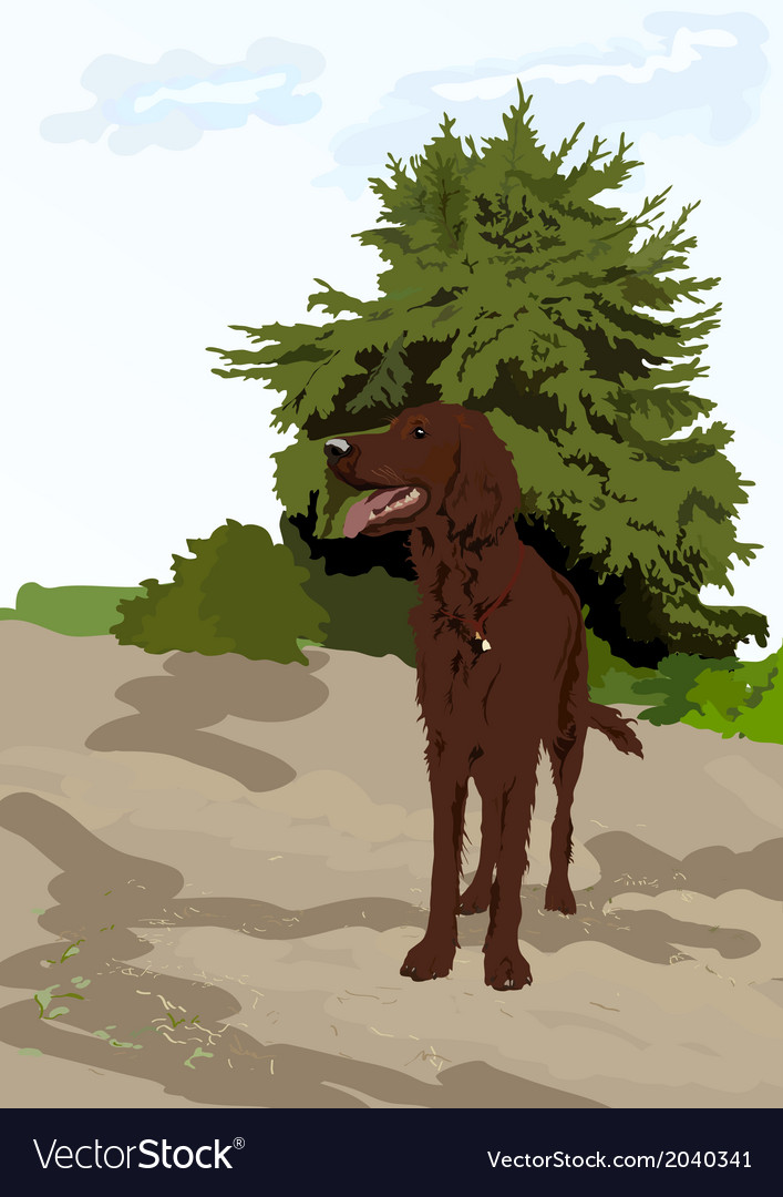 Dog near the tree vector | Price: 1 Credit (USD $1)