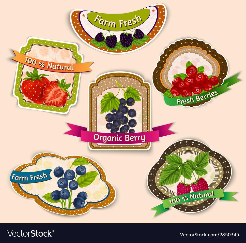Berries emblems set vector | Price: 1 Credit (USD $1)