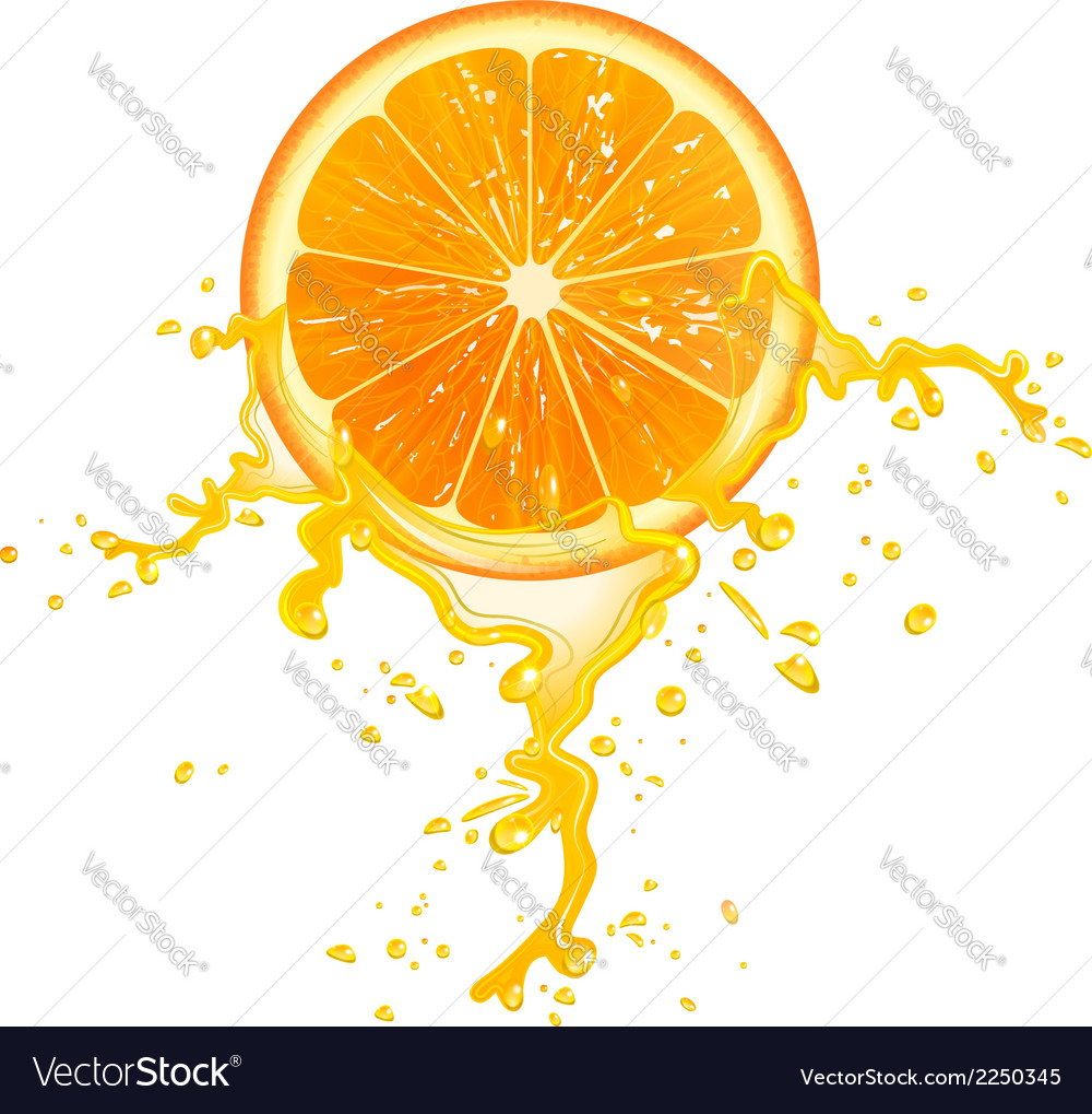 Orange slice vector | Price: 1 Credit (USD $1)