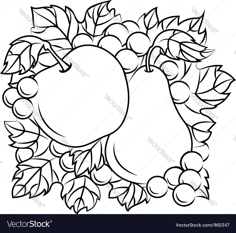 Fruits decoration with apple pear and grape vector | Price: 1 Credit (USD $1)