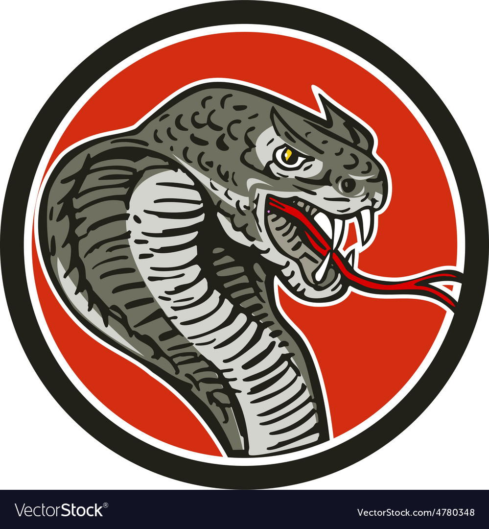 Cobra viper snake circle retro vector | Price: 1 Credit (USD $1)