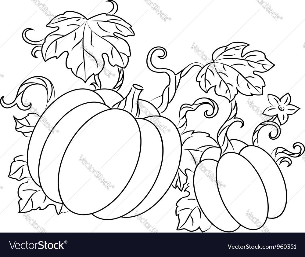 Pumpkin harvest drawing in retro style vector | Price: 1 Credit (USD $1)