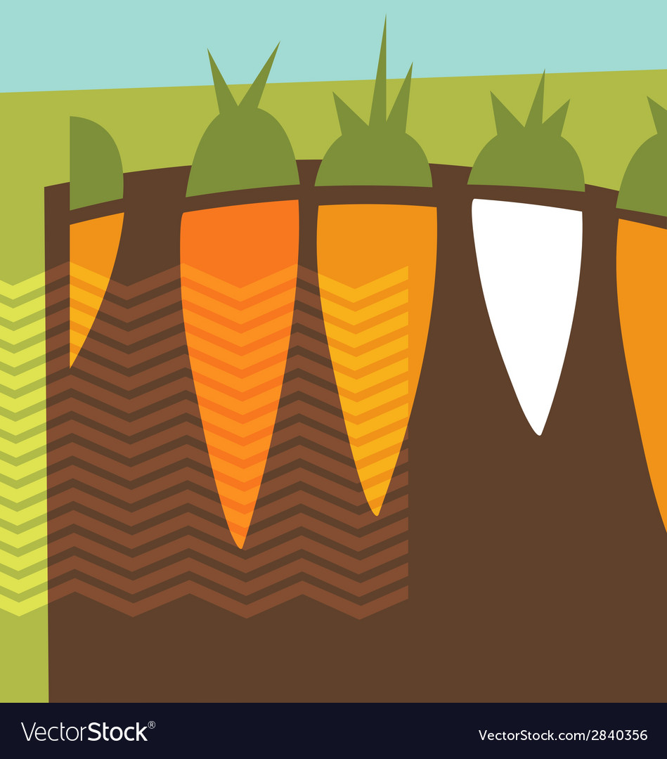 Abstract carrots garden collage vector | Price: 1 Credit (USD $1)