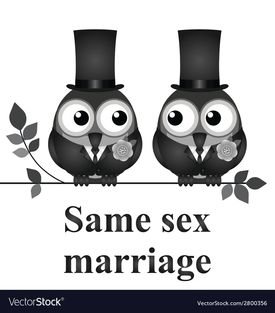Same sex marriage vector | Price: 1 Credit (USD $1)