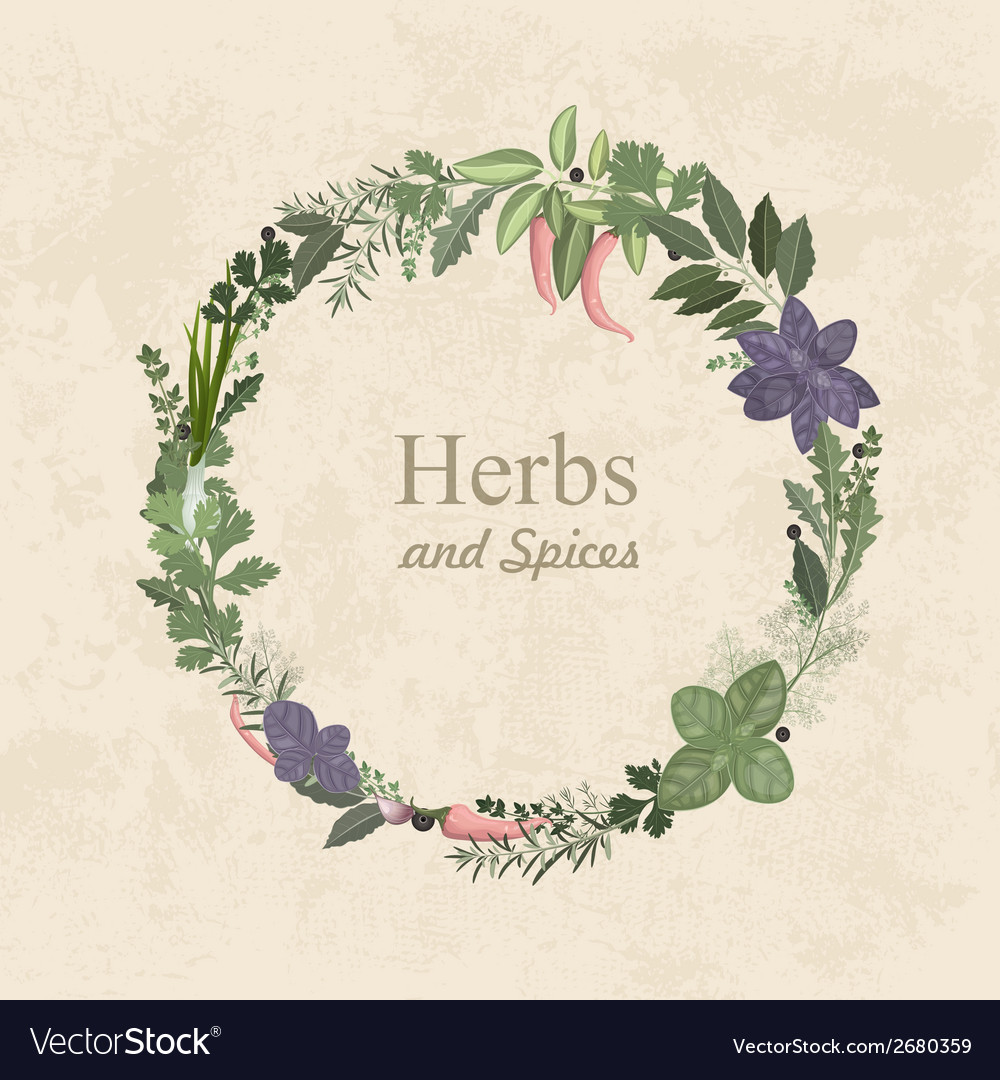 Vintage label of herbs and spices for your design vector | Price: 1 Credit (USD $1)