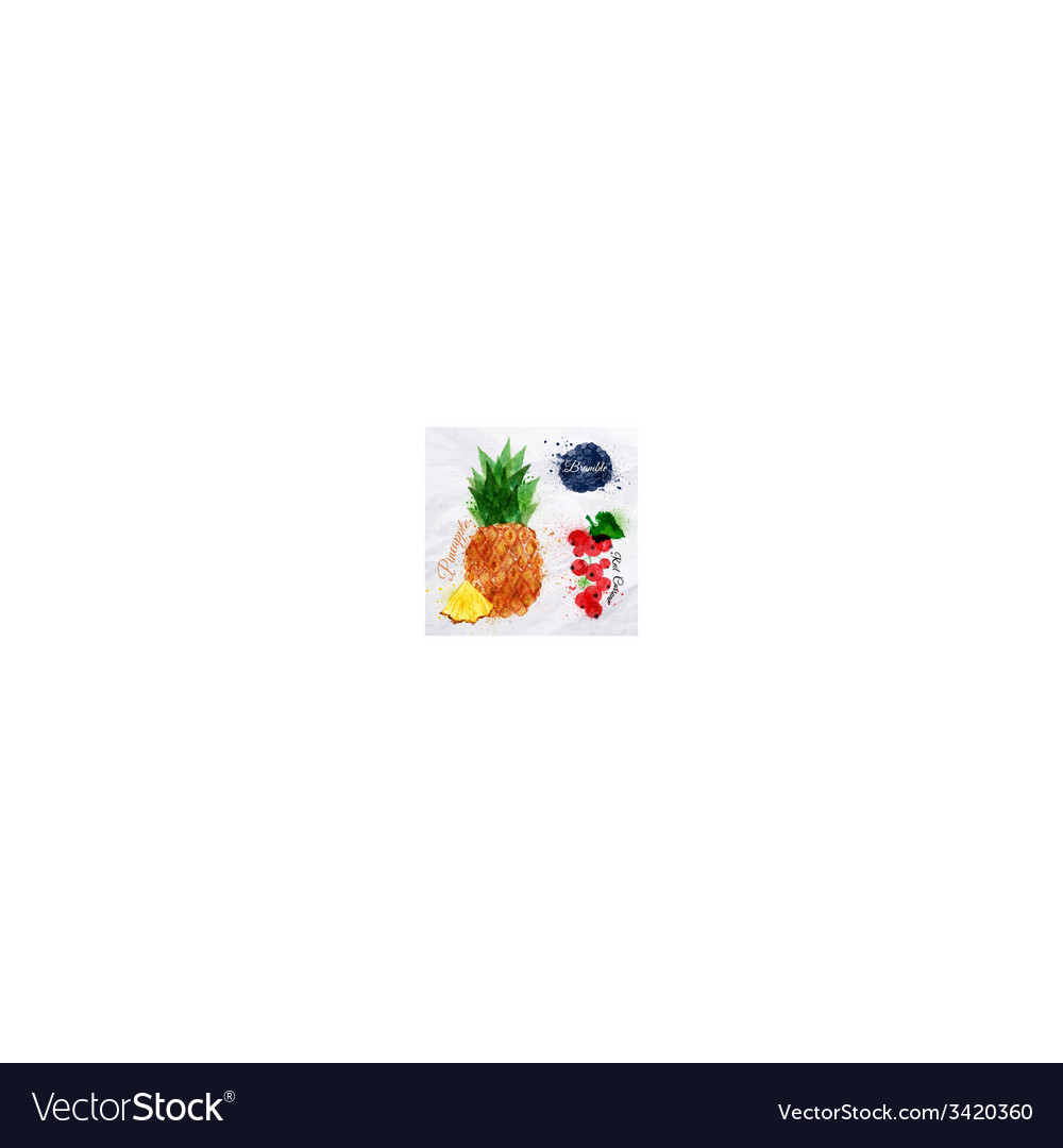 Fruit watercolor pineapple bramble red currant vector | Price: 1 Credit (USD $1)