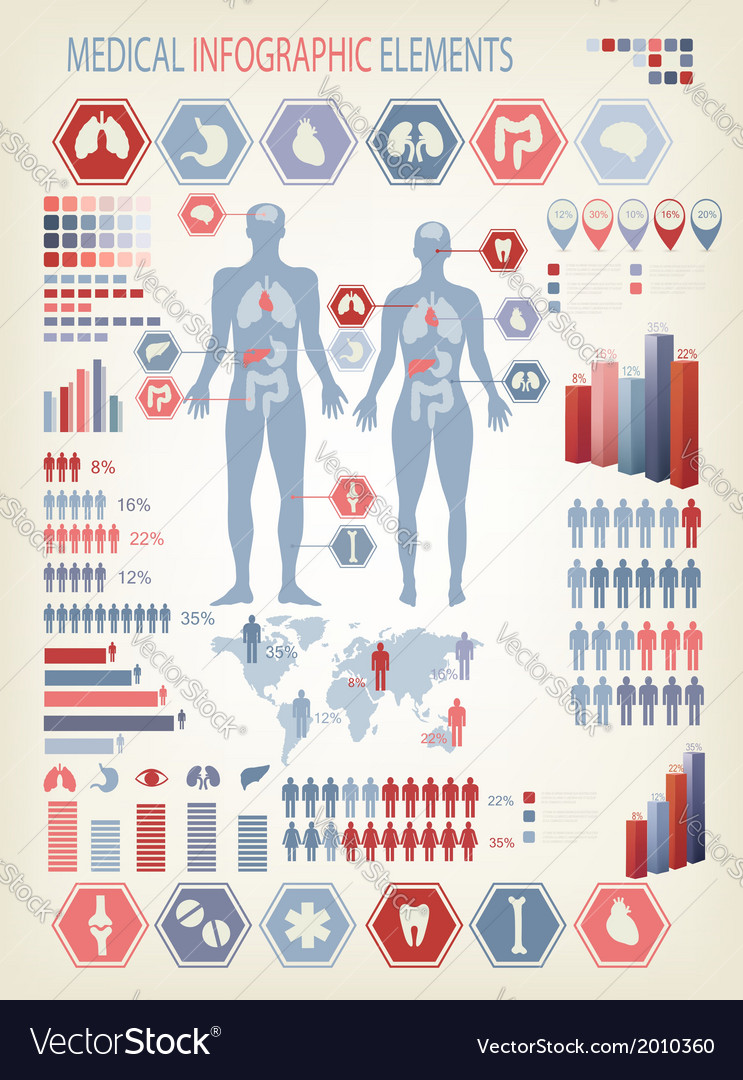 Medical infographics elements human body with vector | Price: 1 Credit (USD $1)